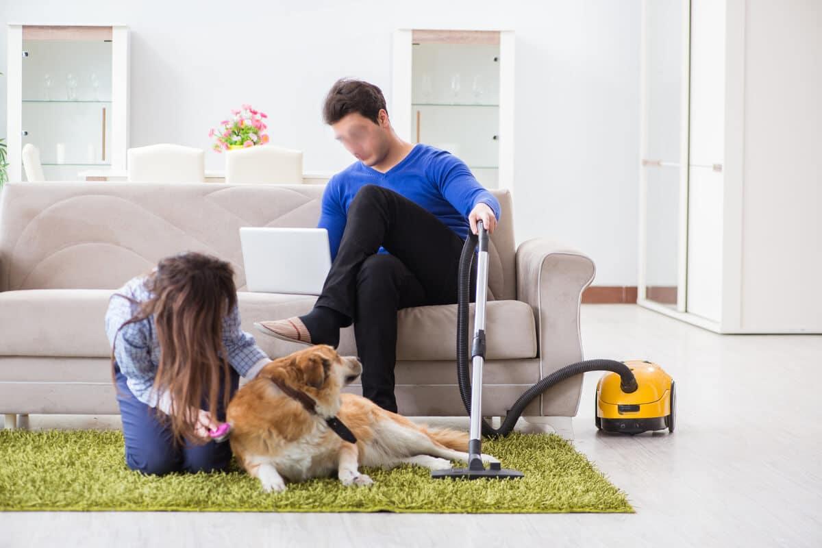 Hundar rädda för dammsugare