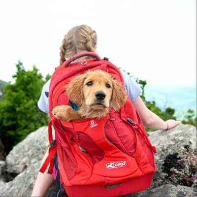 Kurgo bärväska/ryggsäck för hundägare